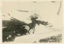 Ferro – Selezione tematica dei documenti dell'Archivio Pietro Pensa